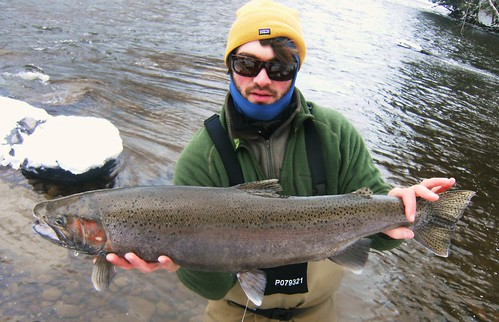 Salmon River Winter Steelheading
