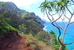 NaPali Coast, Kauai, Hawaii (Ron Reason) Tags: hawaii kauai napalicoast hawaiinapalicoast