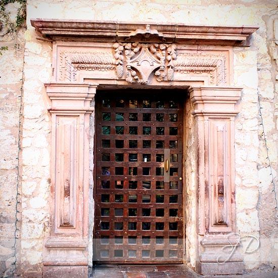 the strong door