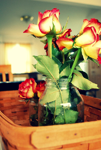 my roses in jars