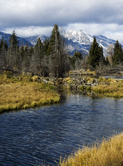 On the way to Schwabacher's Landing (David Morse) Tags: park wood blue trees sky usa cloud brown white mountain lake black mountains southwest tree green nature water pool grass yellow pinetree pine clouds america canon river landscape geotagged 350d xt gold us nationalpark rocks path ngc gray canon350d snakeriver wyoming grandtetons rebelxt tetons soe wy grandtetonnationalpark usnationalpark canondigitalrebelxt naturesfinest coth supershot topshots schwabacherslanding davidmorse anawesomeshot goldstaraward goldstarawardgoldmedalwinner worldwidelandscapes absolutelystunningscapes naturethroughthelens dragondaggerphoto flickrclassique redmatrix yourwonderland coth5 newgoldenseal naturesgreenpeace theoriginalgoldseal flickrsportal