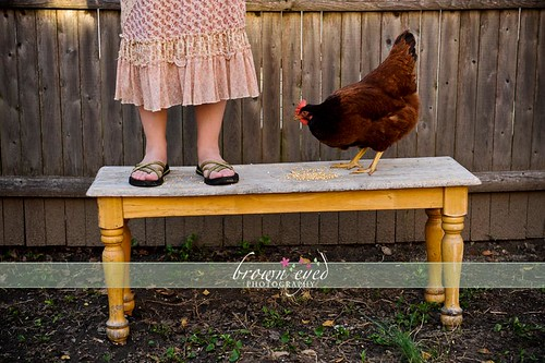 BEP Easter bench