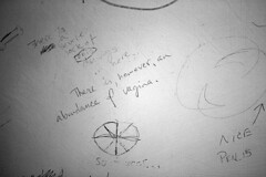 Shortage of penis, abundance of vagina (quinn.anya) Tags: penis graffiti drawing doodle vagina regensteinlibrary universityofchciago blevelmensroom