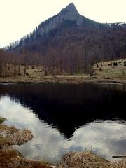 képmás / effigy (debreczeniemoke) Tags: landscape land piton transylvania táj tájkép erdély tőzegláp kakastaréj sziklabérc tăulchendroii creastacocoşului