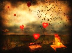~ (~Ania Tatarynowicz~) Tags: light sky bird texture birds night clouds lights avatar avi sl ciel secondlife textured alia theblackbirds slwindlight flickrunitedaward