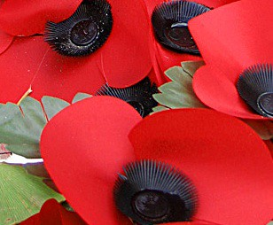 Remembrance day poppies Andrew Dunn (crop) Creative Commons