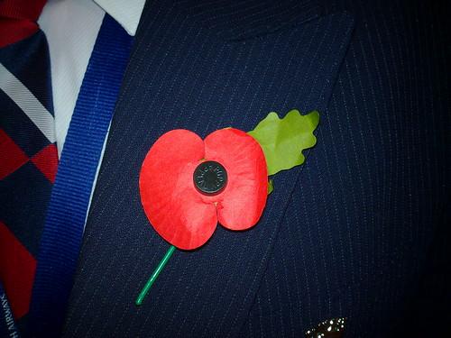Armistice Day Poppy
