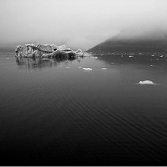 Black Fjord #1 (Wen Nag (aliasgrace)) Tags: blackandwhite bw nature water norway fog 1025fav 510fav square landscape accepted1of100 svalbard arctic iceberg 1in10f100v 1in10f50v raudfjorden