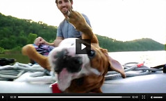 Jake Owen and Dog Vern in VLX
