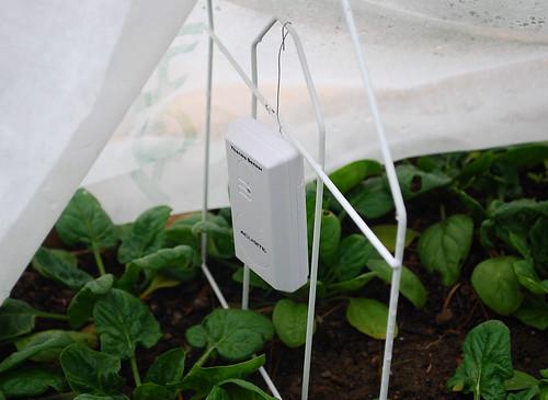 max min thermometer sensor