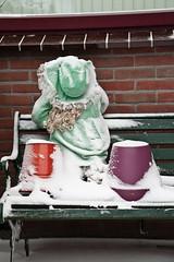 Braving the snowstorm (KennethVerburg.nl) Tags: christmas winter white snow holland netherlands dutch sneeuw nederland wit flevoland almere almerehaven