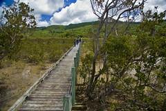 Motuti Marae (Gins) Tags: new canon eos zealand 5d hokianga maori nueva marae zelanda mitimiti cultur experiencie motuti