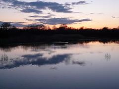 Sunset at Brandon Marsh.  P1200805 (Joy Shakespeare) Tags: uk sunset landscape coventry westmidlands brandonmarsh warwickshirewildlifetrust