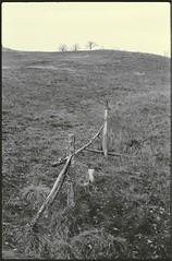 (Blackeyedog) Tags: winter bw film analog canon landscape 50mm nowhere inverno freddo paesaggio umbria eos300 pellicola fomapan id11 nocera umbra salmaregia