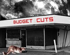 """""""Budget Cuts"""" :: 03122009"""