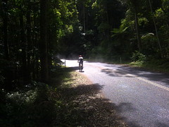 Climbing Northbrook Parkway