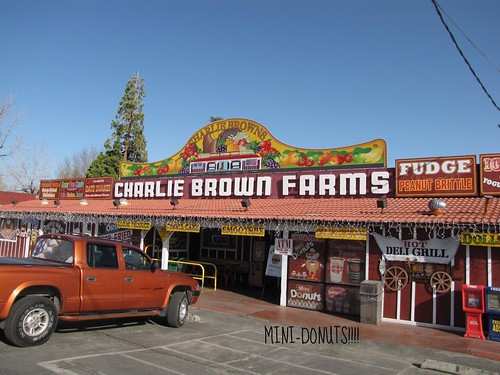Charlie Brown's Farm-1 Donuts!