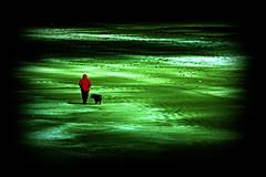 Los de Marte en Venus (Memo Vasquez) Tags: mars dog man green beach sonora mxico landscape venus playa paisaje perro hombre marte rockypoint puertopeasco vede peasco memovasquez platinumheartaward losdemarteenvenus