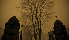 Cemetery Gates (art by stones) Tags: mist cemetery norway fog canon scary mood gates atmosphere creepy sephia pantera gravyard haugesund 24105mm 5dmark2