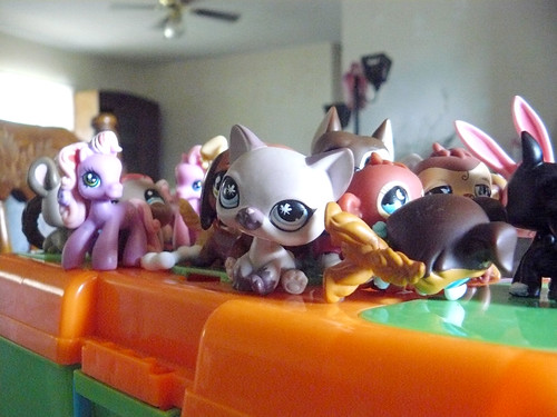 Pets&ponies