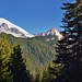 Mount Rainier and Little Tahoma Peak While Wandering Box Canyon