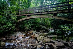 A Bridge Over Water (Gerald Faulkner) Tags: ifttt 500px stream water river waterfall rocks trees forest mountain bridge