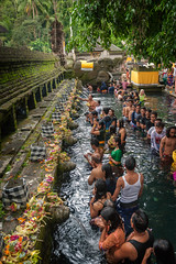 Pura Tirta Empul, Bali, Indonesia (EdBob) Tags: puratirtaempul pura tirta empul temple ceremony bali balinese hindu hinduism fullmoonceremony bathing holy water tampaksiring indonesia petirtaan spring pond hindus people pray praying worship amritha men women offerings canang forest trees day asia asian southeastasia southeastasiatravel edmundlowephotography edmundlowe allmyphotographsare©copyrightedandallrightsreservednoneofthesephotosmaybereproducedandorusedinanyformofpublicationprintortheinternetwithoutmywrittenpermission ubud religion