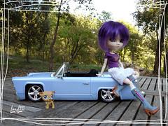 C'est encore mieux qu'au salon de l'auto ! (.LanyLane.) Tags: bigeyes doll groove pullip bratz purplehair poupée plasticdoll junplanning suiseiseki pullipsuiseiseki littlespetshops