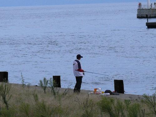江之島釣客
