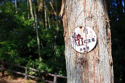 11.08 Ojiyama Park - Sasayama3