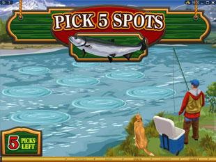 free Alaskan Fishing gamble bonus game