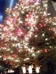 クリスマスツリー_1