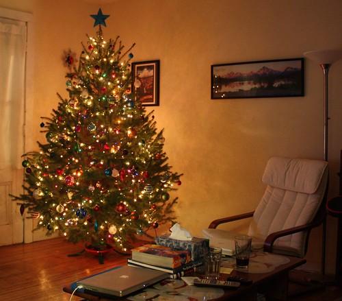 Christmas Tree 2009-05mod
