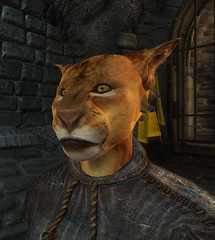 female Khajiit 00 default