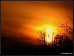 Un début de journée (TreborF †) Tags: orange jaune canon rouge soleil noir lumière couleurs branches powershot arbres nuage nuages paysage arbre couleur oranger branche riceworld natureslight anawesomeshot