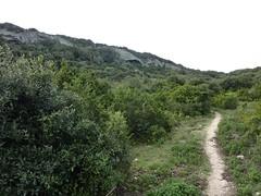 Sur le sentier Pertusatu - Cala Sciumara : le versant Sud du sentier