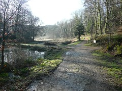 The steaming lost valley, Heligan (zawtowers) Tags: holiday gardens lost frost cornwall walk january scenic away steam valley melt heligan 2010 mevagissey kernow lostgardensofheligan pentewan southwestengland lannvorek heliganslostgardens