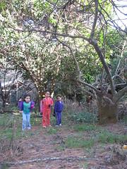 IMG_0394 (SANDRIUX) Tags: mountain mexico los leon domingo monterrey domingos nuevo chipinque montaa
