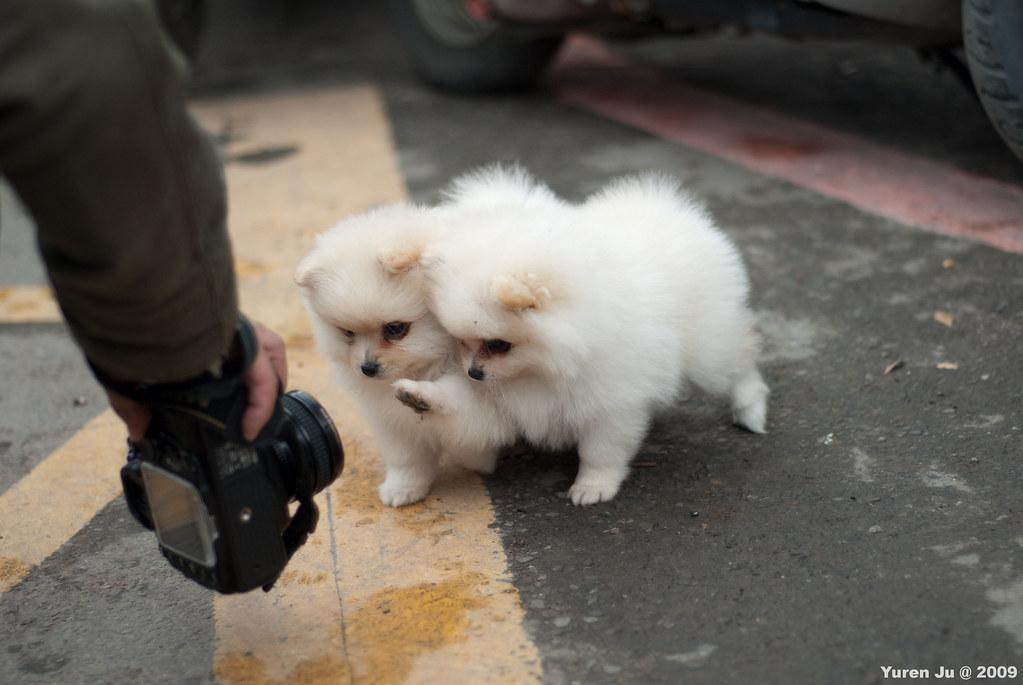 想玩相機~