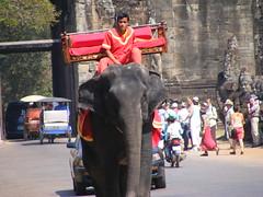 Cambodian Elephant (Simonhul) Tags: elephant trek temple asia cambodia sightseeing monk tourist siem reap angkor reab khymer angkortham