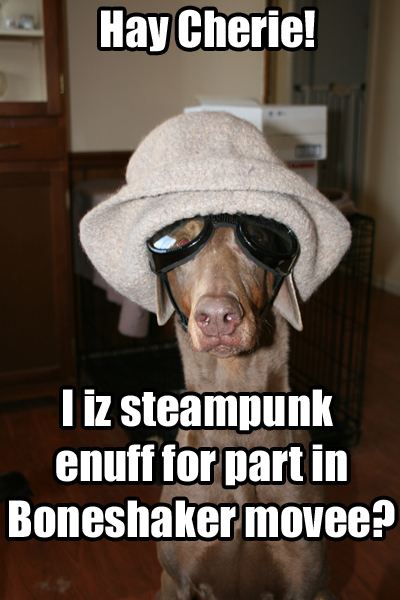 Tink the fawn doberman stares dubiously at the camera.  She is wearing Doggles, the lens over her blind eye smoked and the one over her good eye clear, and a slouch hat.  The caption reads 'Hay Cherie!  I iz steampunk enuff for part in Boneshaker movee?'