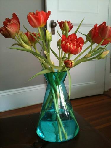 Ruffly tulips
