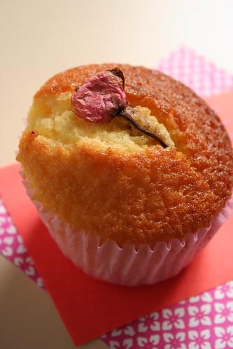 桜のカップケーキ [試作]
