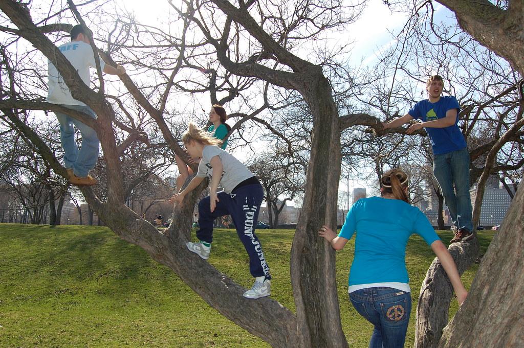 climbing trees pt 1