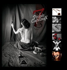 "[ Appel  candidature - CLOSE ] Book ""7 Pchs Capitaux"" (Franck Tourneret) Tags: photography published photographie contest application edition concours casting association publication 7deadlysins bnvolat dition candidature 7pchscapitaux carrfranais"
