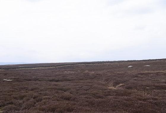 Ilkley Moor Walk: Conclusion
