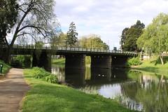 IMG_0306 (davidlovesrona) Tags: vacation tasmania tassie