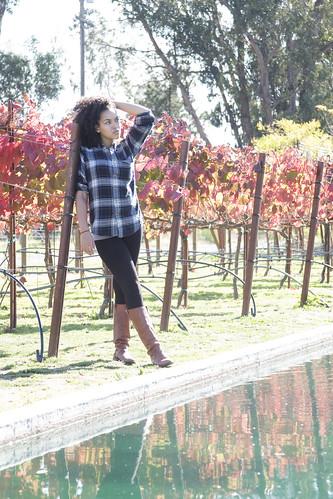 Vineyard [318/365]