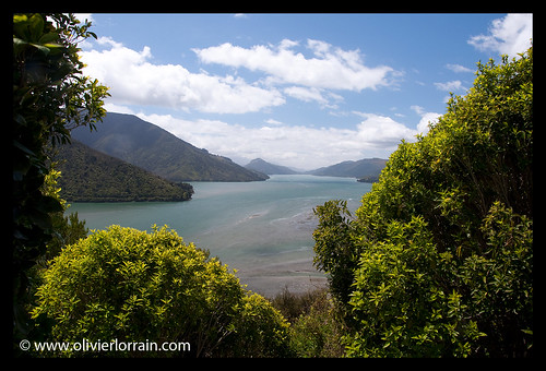 View of the Sounds - Marlborough Sounds, NZ