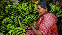 Lady Ba Na Na • Madurai - vegetable market (Henk oochappan) Tags: life city people food india canon eos market banana daily ef1635mmf28lusm 2009 madurai tamil tamilnadu southindia canoneos5d oochappan indianphotography indianlady lifeinindia tamillifeculture tamilnadulifeculture maduraicitylife img0321b